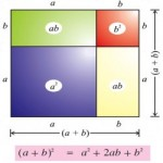 Binomial Distribution Rules